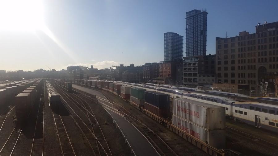 Latest Sight: Morning tracks